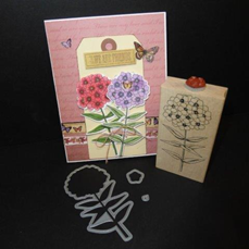 MBOE Phlox Friends Card